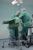 Chirurgie canine réduction d'une fracture France ; Et opération d'ostéosynthèse. Vétérinaire canin (de face) et assistante (de dos)