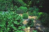 Jardin de plantes aromatiques Le jardin des mélanges France