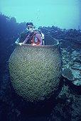 Eponge baril géante Iles Caymans Mer des Caraïbes