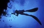 Plongeur en contre jour Bahamas