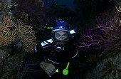 Albert Falco derrière des Gorgones inspecte les calanques ; Septembre 2004, Albert Falco, ancien capitaine de La Calypso de J.-Y. Cousteau, plonge à l'âge de 77 ans. Les écosystèmes qu'abritent ces calanques sont menacés par les activités humaines dont A. Falco dénonce les conséquences.