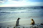 Deux chiens sur la plage de Sanja Jelaca à Tulum Mexique