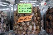 Médicaments traditionnels chinois New York City USA ; Médicaments traditionnels chinois déshydratés et provenant de la mer exposés dans un bocal à Chinatown.