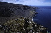 Paysage de la côte sud de l'île de la Possession Crozet ; Au loin, on devine l'île de l'Est