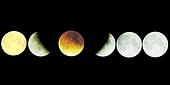 Progression of the Moon's umbra during an eclipse ; 21st Jan 2000 lunar eclipse.<br>This photomontage shows the Moon's progression in the umbra and penumbra of the Earth. The Moon moves from right to left. Exposure shows the brightest part of the Moon. This picture shows what one would obtain from following the rotation of the sky, as opposed to the Moon's movement. The position of each individual picture of the Moon has been calculated to obtain a scientifically precise summary of the phenomenon. The yellow color of the Moon on the last image is due to its low position in the sky at the end of the eclipse.