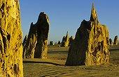 Pinnacles du parc national de Nambung Australie