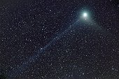 Machholz comet and its highly visible plasma tails ; Date: 9th Jan 2005<br> Subject: Comet C/2004 Q2 Machholz<br> That night, the plasma tail was very thin, almost straight.