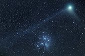 Comète Machholtz  visible près de l'Amas des Pléïades ; Date : Janvier 2005<br>Objet : Comète C/2004 Q2 Machholtz.<br>Amas ouvert des Pléïades.<br>Ces objets semblent proches mais leurs distance et origines n'ont aucun rapport. <br>Amas ouvert des Pléiades : 380 années-lumière de nous et il mesure environ 13années-lumière<br>La comète n'est qu'à 57 millions de kilomètres, sa partie visible mesurant environ 450.000 km.