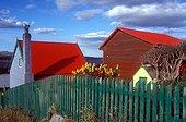 Village de la côte est de l'île de Falkland Royaume-Uni ; Stanley