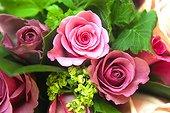Bouquet de roses modernes