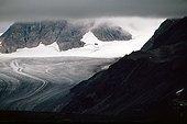 Glaces dans le Nordvestfjord Groenland ; fronts de glacier qui s'abiment en mer donnant naissance à de nombreux icebergs