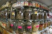 Ingredients of traditional Chinese medicine HongKong