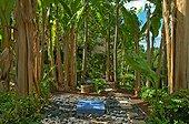 Jardin oriental au Jardin des Paradis Cordes / Ciel