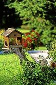 Mangeoire à oiseau posée dans un jardin France