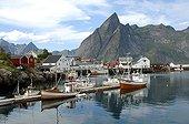 Port de pêche morutier pour production de stockfish Lofoten