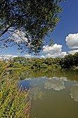 Etang et forêt alluviale dans la RN de la Basse Savoureuse