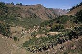 Paysage agricole dans la région de Espirito Santo Brésil