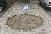 Espace d'hygiène canine à Doudeville France