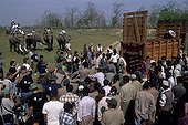 Transport of the deadened Rhinoceros captured Nepal