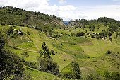 Agricultural landscape of Chiapas Mexico ; Overall picture on the farms on the hills.