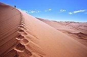 Rise of dunes in the desert of Namib Namibia