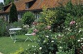 Salon de jardin et rosiers en fleur au Royaume-Uni