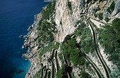 Ile de Capri, les falaises. Escaliers descendant vers la mer