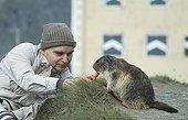 Tourist and Alpine Marmot  Hohe Tauern Austria