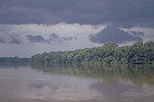 Fleuve Sangha et sa forêt galerie Ouesso Congo