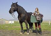 Adolescente sellant son Cheval Merens France