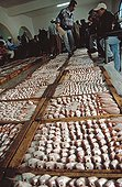 Fish display at the outcry market of Essaouira Morocco