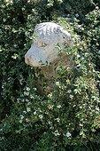 Sculpture canine Jardin du Mas de Payan Tarascon France