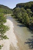 La rivière Ouvèze et sa ripisylve Vaucluse France ; Entre Entrechaux et Faucon.
