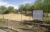 Enclosure of Oryx of Arabia to the  Phoenix Zoo Arizona USA