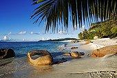 Tropical beach on Cousine Island Seychelles ; @ Cousine (Island)