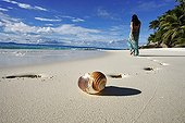 Woman walking on a tropical beach Frigate Island Seychelle ; Anse Victorin beach and palm trees. Voted by the London Sunday Times as the word's best beach.<br>@ Frigate (Island)