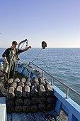 Largage d'amphore de pêche au poulpe Camargue France ; le Grau du Roi