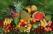 Mix of Tropical fruits