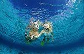 Snorkeling girls Komodo National Park Indian Ocean