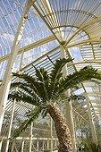 Greenhouses of the botanical garden of Glasnevin Dublin Ireland
