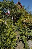 Allée bordée de fougères dans un jardin japonais Belgique
