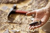 Paleontologist releasing a fossil tooth of Sarcosuchus Niger ; Researcher: Jean-Sebastien Steyer of the National Natural History Museum (MNHN)<br/>Site : Gadoufaoua