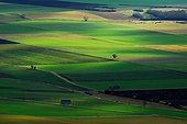 Plain of Lembronnais seen since the puy of Ysson France