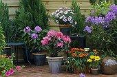 Flowered garden terrace