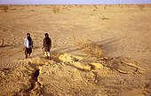 Tuaregs near a burrow of Ratel Sahara Tenere region Niger