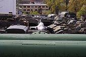 Pipes of factory and tanks Liberec Czech Republic ; Region : Liberec