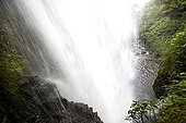 Cascade in dense evergreen forest Cost Rica ; Site: La Paz waterfall gardens