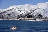 Petit chalutier sur la côte de Norvège