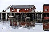 Maisons dans un port de pêche Varanger Norvège ; Dans un fjord
