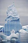 Landscape of ice and iceberg Antarctica